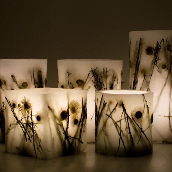 Botanical lantern μαργαρίτες