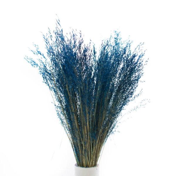 hilda μπλε